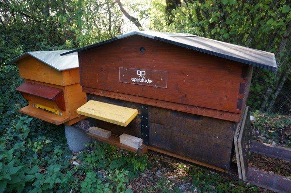 La bi-ruche